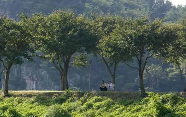 썩은돼지의 썩은사진 :: 한적한 시골길에서